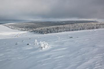 Tempête de neige sur le Mont-Lozère