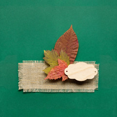 Happy Thanksgiving day / Creative thanksgiving day concept photo of leaves on green background.