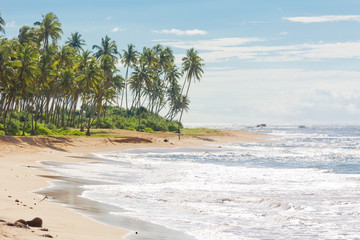 Sri Lanka, Rathgama - Lovely natural beach landscape of Rajgama aka Rathgama