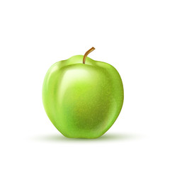 Vector realistic green apple fruit 3d isolated