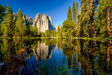 Wall Murals Reflection Middle Cathedral Rock reflecting in Merced River at Yosemite