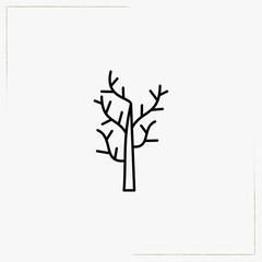 dry tree line icon