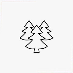 spruce line icon