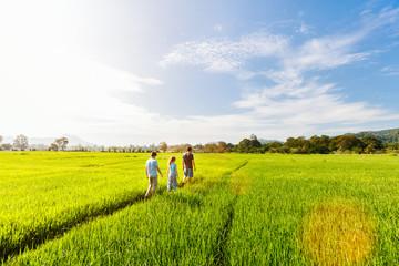 Family walking in rice field