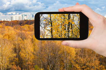tourist photographs urban park in Moscow in autumn