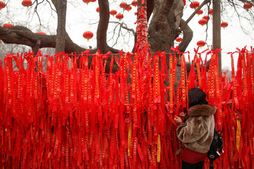 A woman reads ribbons at a wishing tree in Badachu park during Spring Festival celebrations marking Chinese New Year in Beijing