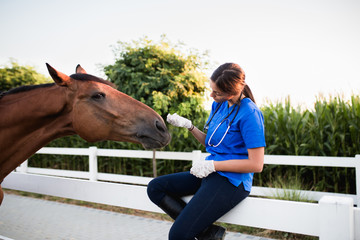 Vet petting a horse outdoors at ranch.