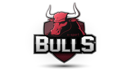 Modern professional bull logo for a sport team