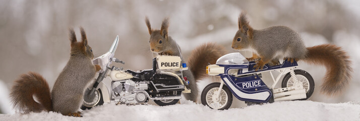 three red squirrels with police motor cycles