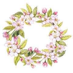 Hand-drawn watercolor wreath of flowers of apples and leaves illustration. Watercolor botanical illustration isolated on white background.