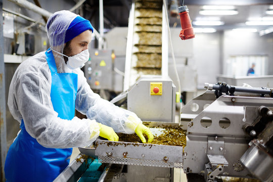 Staff of seafood production factory carrying out his work by industrial seaweed salad mixing machine