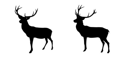 Set black and white deer with horns isolated on background. Vector Illustration.
