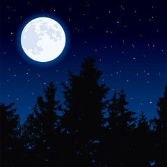 vector  moon in night sky and forest trees