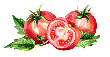 Red ripe tomatoes horizontal composition. Watercolor hand drawn illustration, isolated on white background