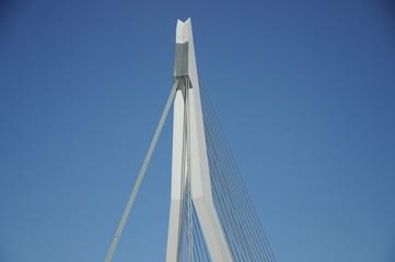 Erasmusbrug Erasmus Bridge in Rotterdam