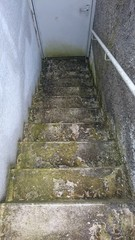peel off soil mossy broken ancient basement stairs with iron door need a cleaning or renovation