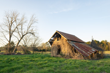 barns shed ruins forgotten abandoned falling apart farm