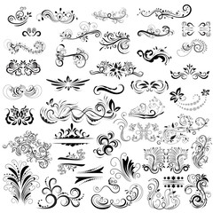 Hand drawn calligraphic scrolls, ornaments, floral decoration collection, vector illustration