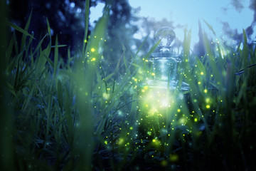 Magical fairy dust potion in bottle in the forest.