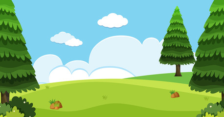 Background scene with pine trees in field