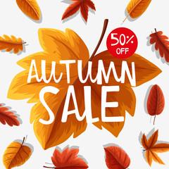 Poster design for autumn sale