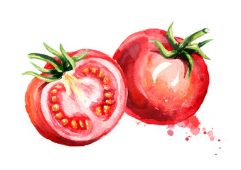 Ripe tomatoes composition. Watercolor hand drawn illustration, isolated on white background