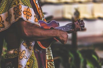 musicien de ukulele