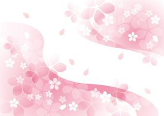 咲く咲く桜 二