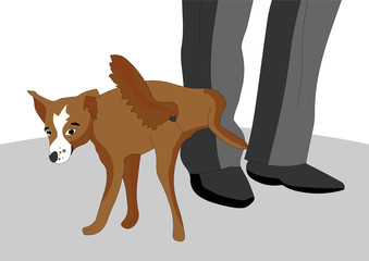 The impudent and disobedient dog decided to pee on the foot of the owner, she has a snide look, vector illustration