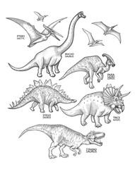 Realistic graphic dinosaurs