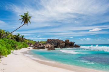 Sandy beach with palm and beautiful rocks in the turquoise sea on Paradise island, Seychelles.