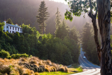 Beautiful morning light on Queenstown-Glenorchy scenic road at Wilson Bay, New Zealand.