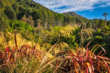Mountain range landscape at Wilson Bay , New Zealand, South Island.