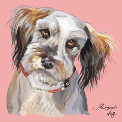Fluffy dog colorful vector hand drawing portrait