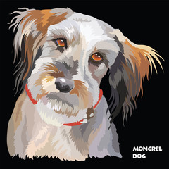 Fluffy dog colorful vector portrait