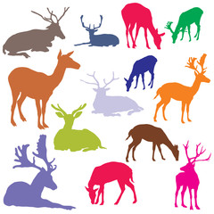 Vector set of colorful deer silhouettes