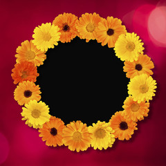 Beautiful Holiday circle Floral photo Frame