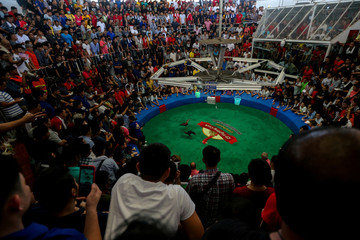People watch a cockfighting match, with the highest cash reward of cockfighting in Thai history for more than one million USD, in a stadium on the outskirts of Bangkok