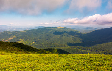 grassy meadow on hillside on a cloudy day. beautiful mountainous landscape in summertime. location Runa mountain, Ukraine