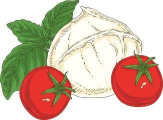 White Buffalo Mozzarella, Tomatoes and Green Basil