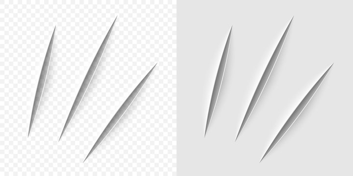Vector realistic cut with a office knife