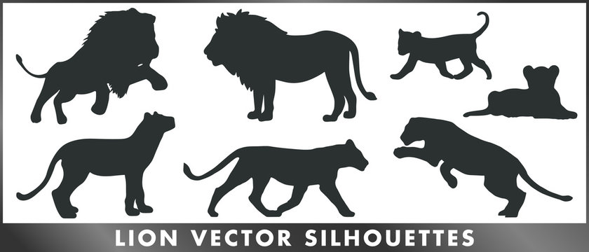 Lion vector silhouettes