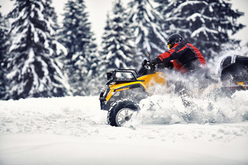 Winter walk on the quad bike in the forest.