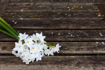 Papiers peints Narcisse Bunch of white narcissi flowers on a rustic bench