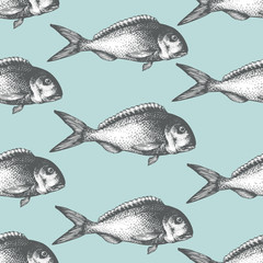 Hand drawn sketch seafood background. Vector seamless pattern with fish. Vintage dorado illustration. Can be use for menu or packaging design. Engraved style. Retro salmon illustration.