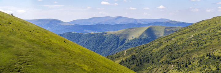 Photo sur Toile Colline Panorama of green hills in summer mountains