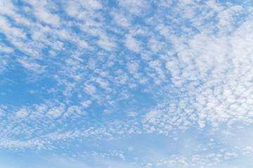 Beautiful Altocumulus cloudscape on blue sky, Cirrocumulus on the middle altitude layer. Nature background with collection of tiny clouds, small fluffy cloud formation. Copy space