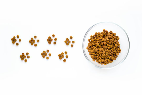 Paw sign made of dry cat or dog food with full bowl. Pet care and veterinary concept with letters on white background.