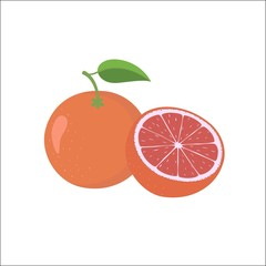 Whole and half unpeeled ripe pink grapefruit, sketch style
