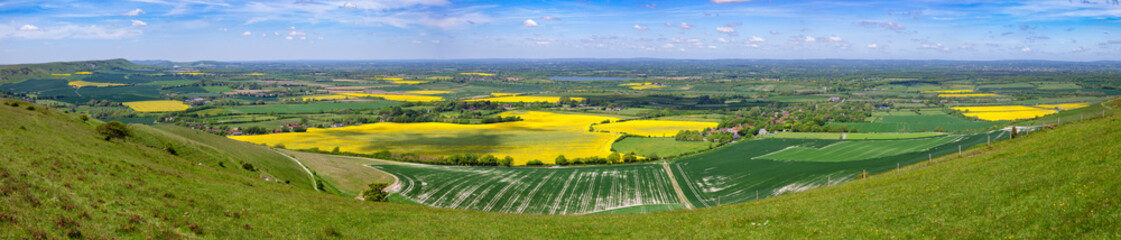 Summer fields  panorama South Downs Sussex Southern England UK